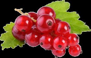 frutti rossi per piani alimentari completi
